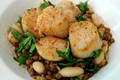 Seared Scallops Over Arugula Lentils And Bean Salad